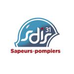 SDIS 31